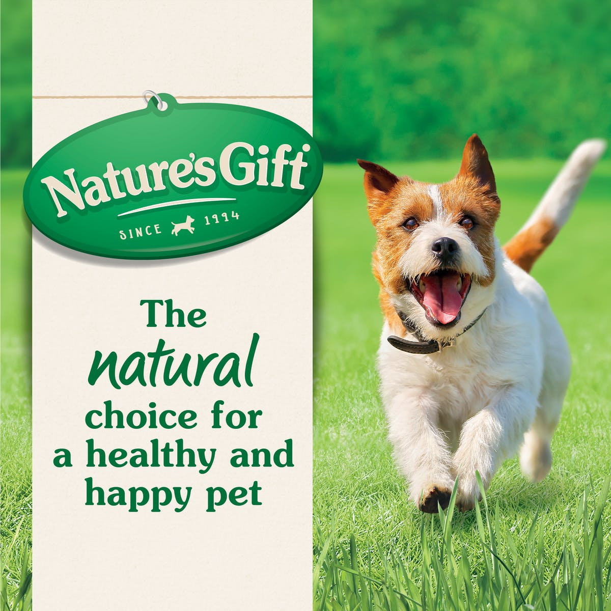 Nature's Gift | Chicken, rice & vegetables | Wet dog food | Top of pack