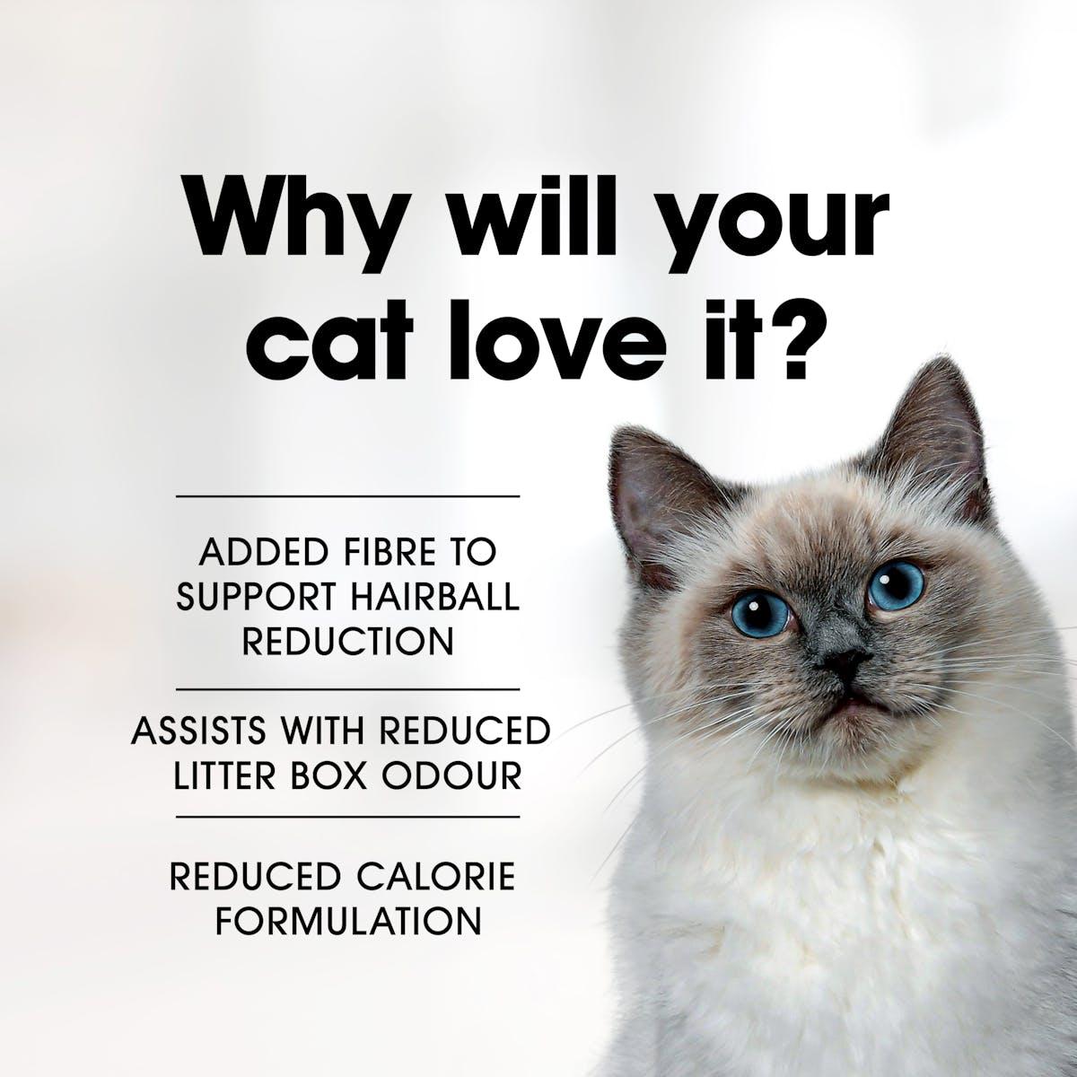 Fussy Cat | Chicken & Oceanfish Indoor | Dry cat food | Top of pack