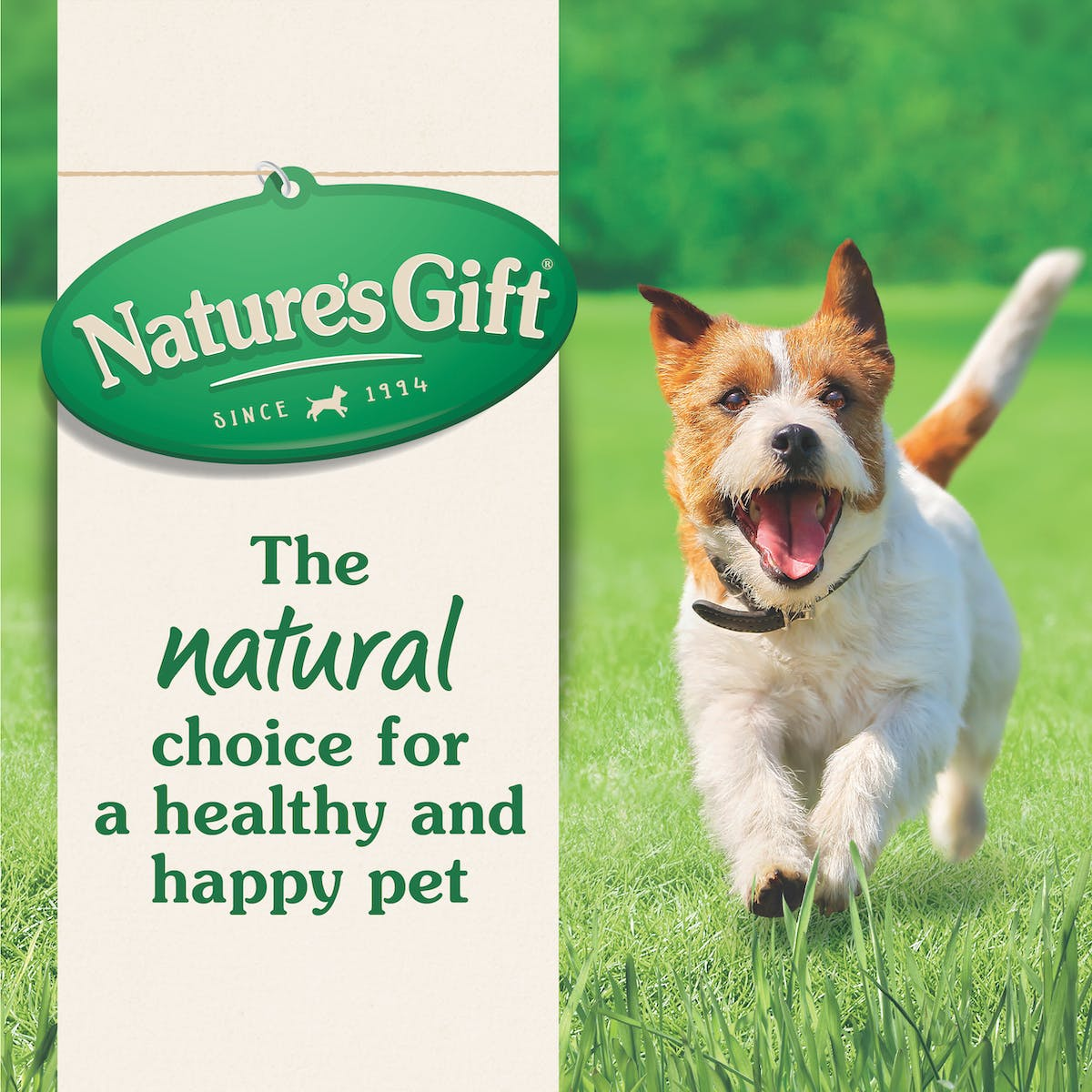 Nature's Gift | Chicken, Carrots & Peas | Wet dog food | Top of pack