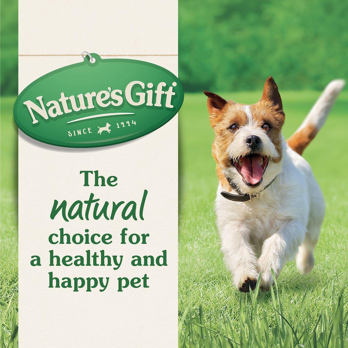 Nature's Gift | Beef & Liver Meatloaf Recipe | Wet dog food | Top of pack