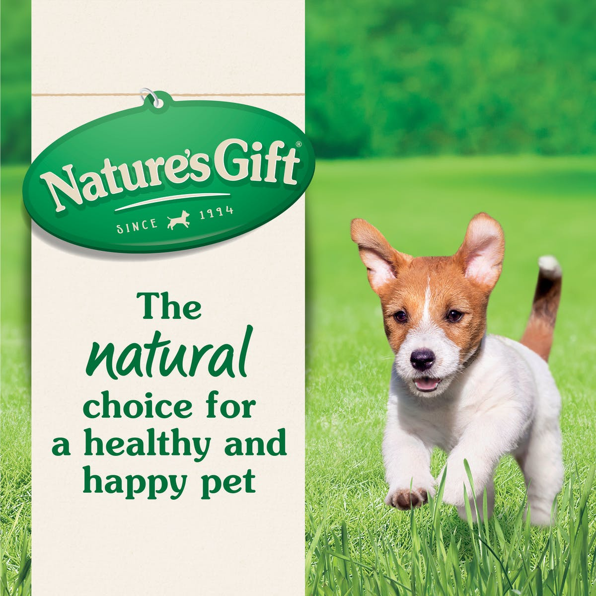 Nature's Gift | Chicken | Dry dog food | Top of pack
