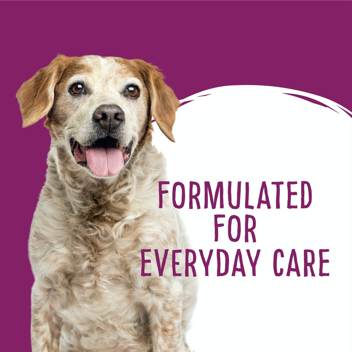 Love'em | Dental Care Daily Dental Sticks Medium - Large | Dog treats | Right of pack