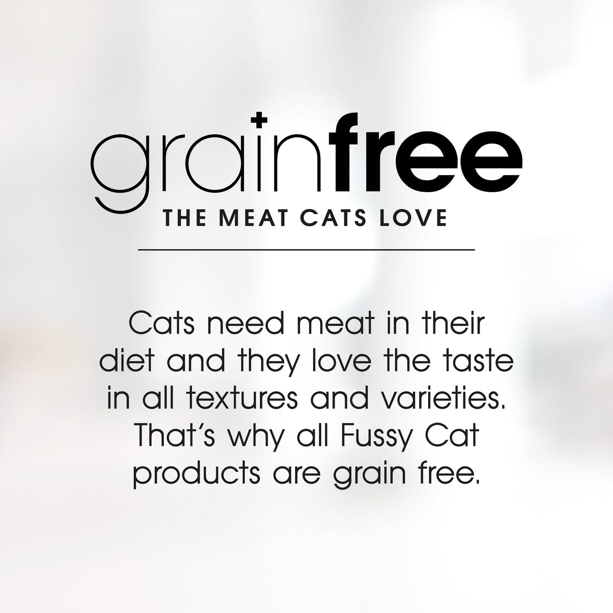 Fussy Cat   Bites & Fish Gravy   Wet Cat Food