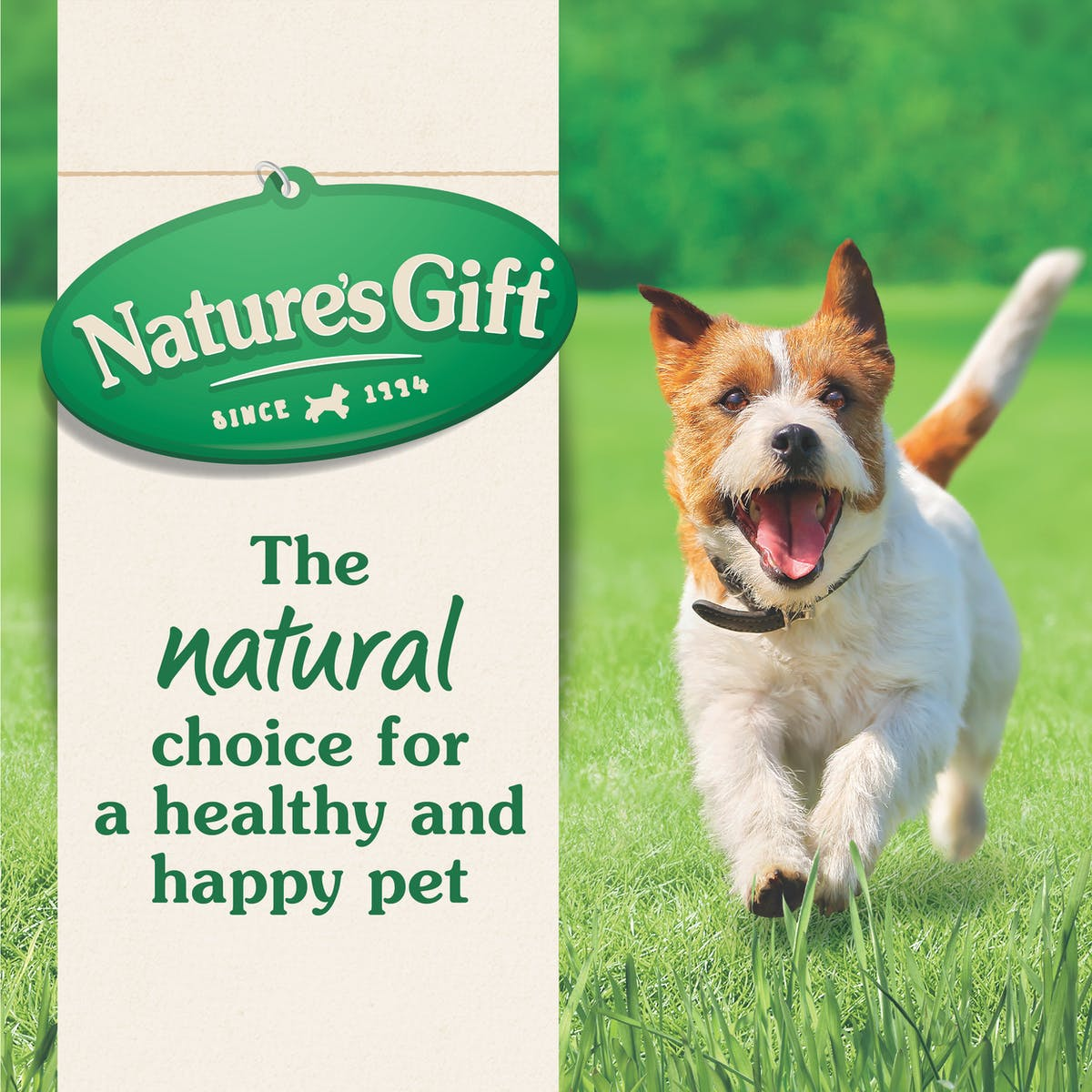 Nature's Gift | Chicken & Fish | Dry dog food | Top of pack